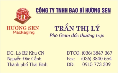 IN CARD VISIT MẪU 4